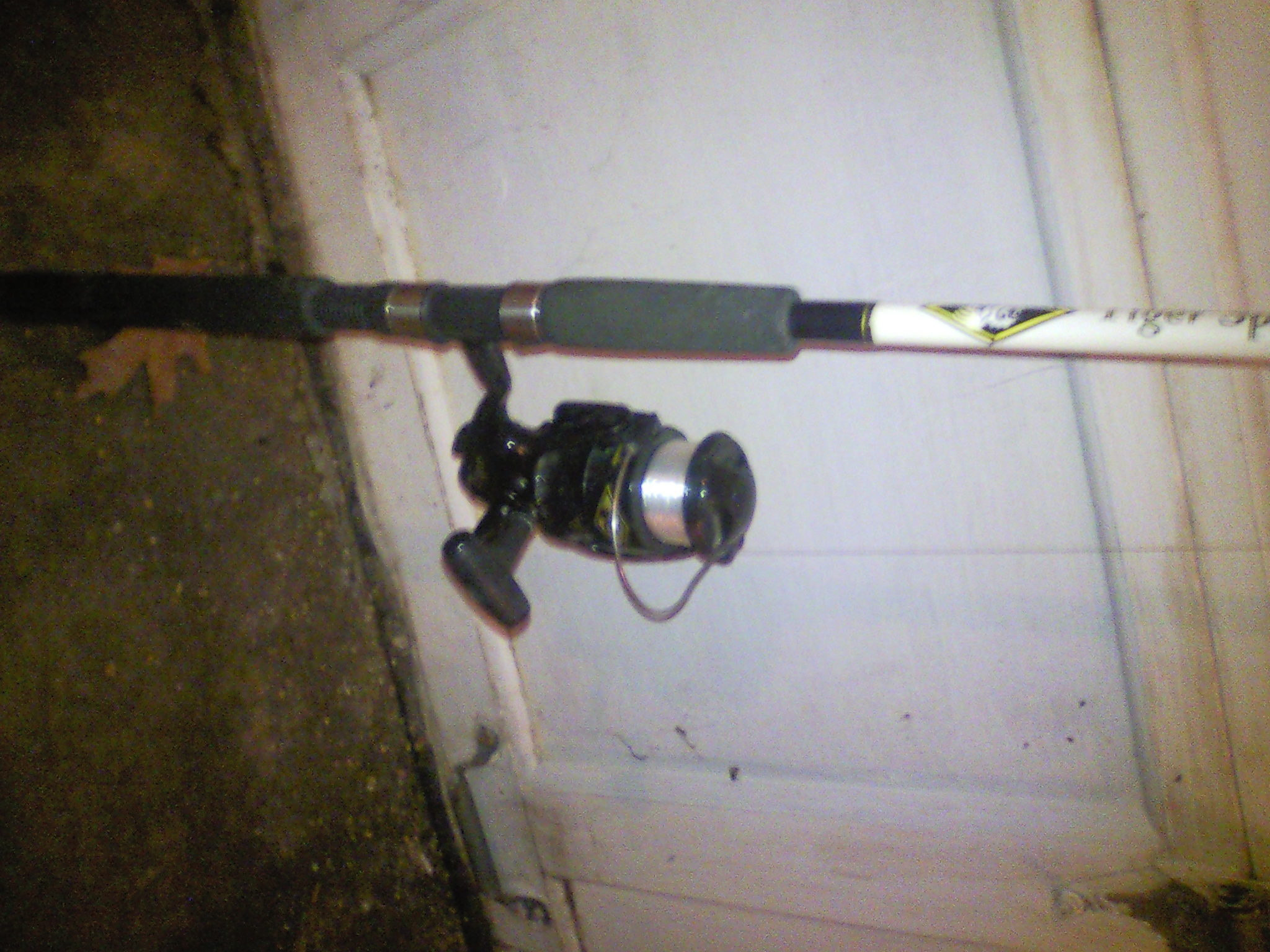 Shakespeare tiger for Shakespeare tiger fishing reel