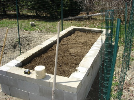 youll see i had to fence the thing because itd be at perfect munching height for the damn deer know that you dont have to cap the walls with additional - Cinder Block Raised Garden Bed