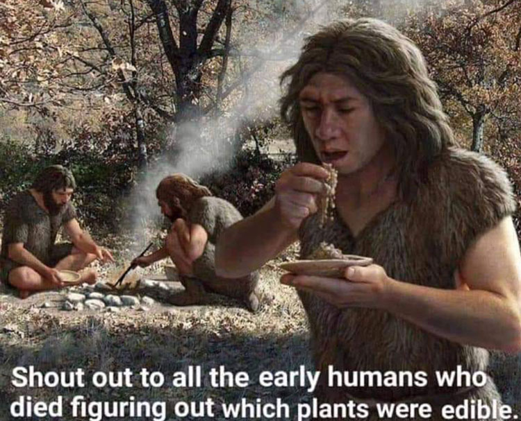 early humans testing food